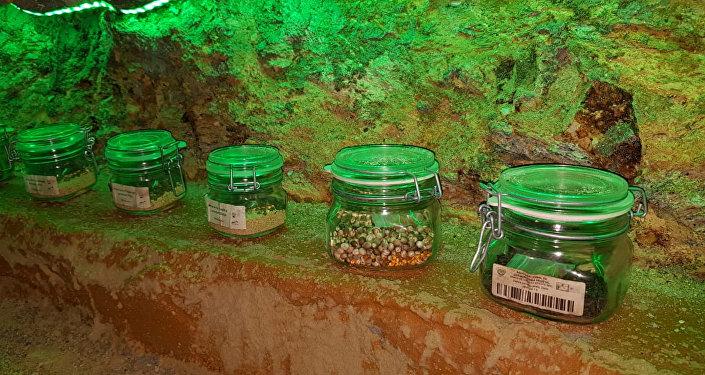 El único banco de semilla en su especie de preservación de la flor de la Cuetlaxóchitl para Guerrero y México