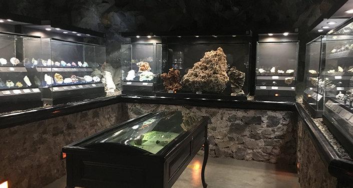 La exposición en el museo de Las Rocas y Fósiles en Zacatecas, México