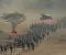 Nuestra Patria es inexpugnable: Venezuela realiza ejercicios militares a gran escala