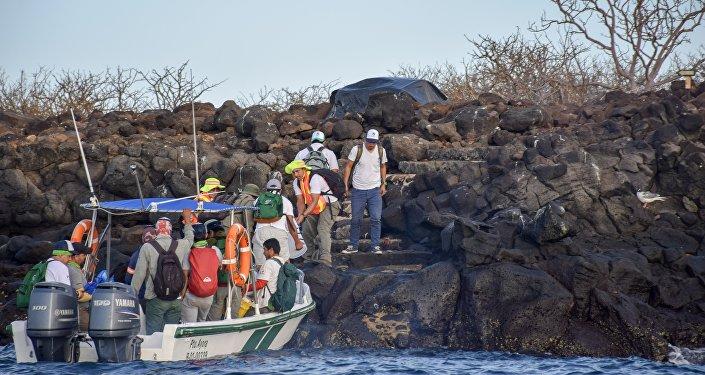 Desembarque de personal y cebos a emplear para la erradicación de roedores en la isla Seymour Norte