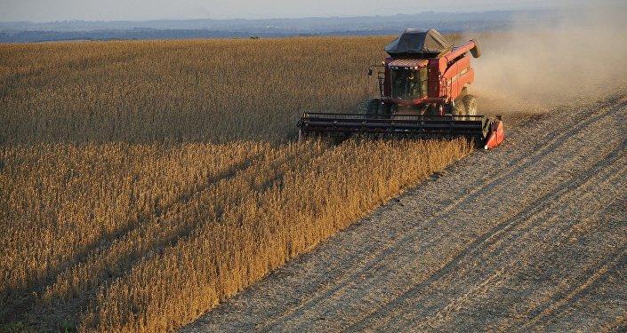 Una trilladora recoge cosechas