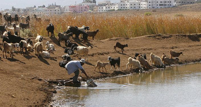 El agua, uno de los recursos más escasos del Medio Oriente