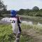 Cómo pescar un cocodrilo… y no morir en el intento