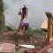 Una joven salta en bungee y sufre una aparatosa caída