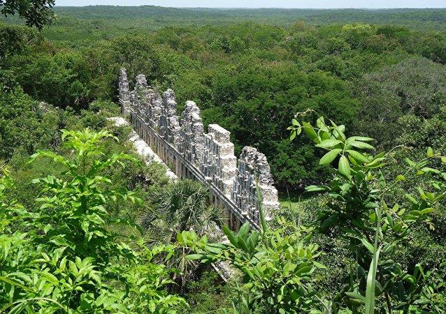 La Selva Maya, en México