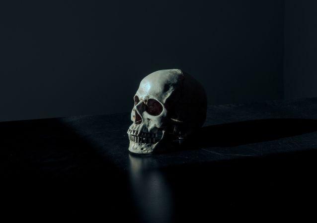 Un cráneo humano (imagen referencial)