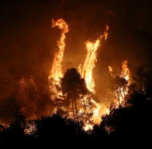 La isla griega de Eubea, devorada por las llamas