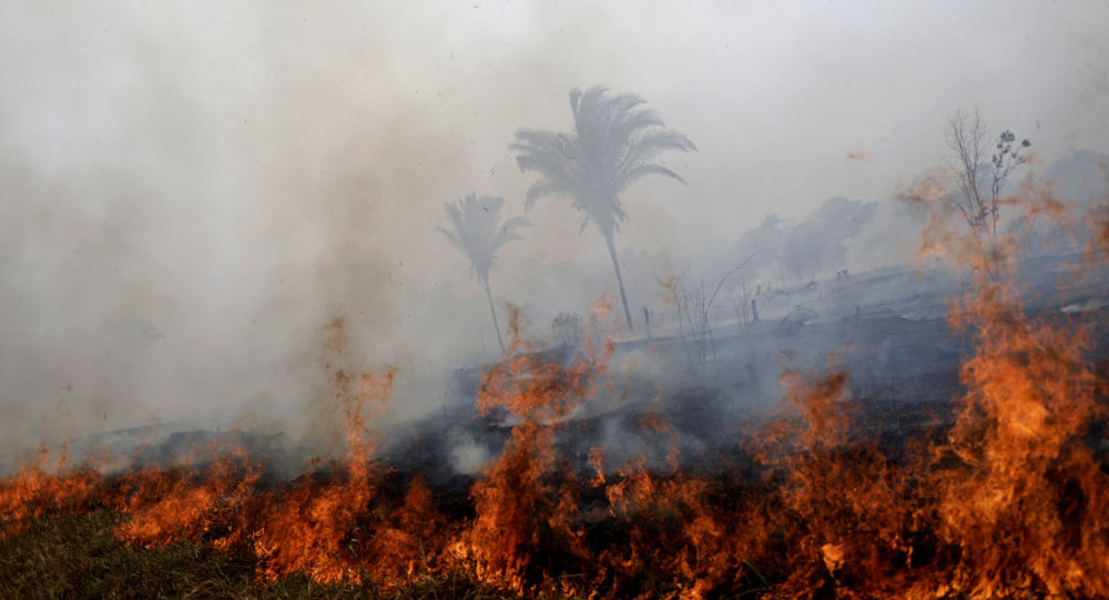 Incendios forestales en la Amazonía brasileña