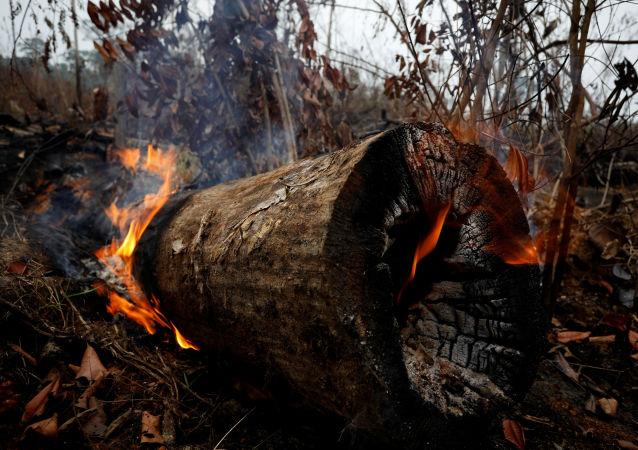 Incendios en la Amazonía continúan