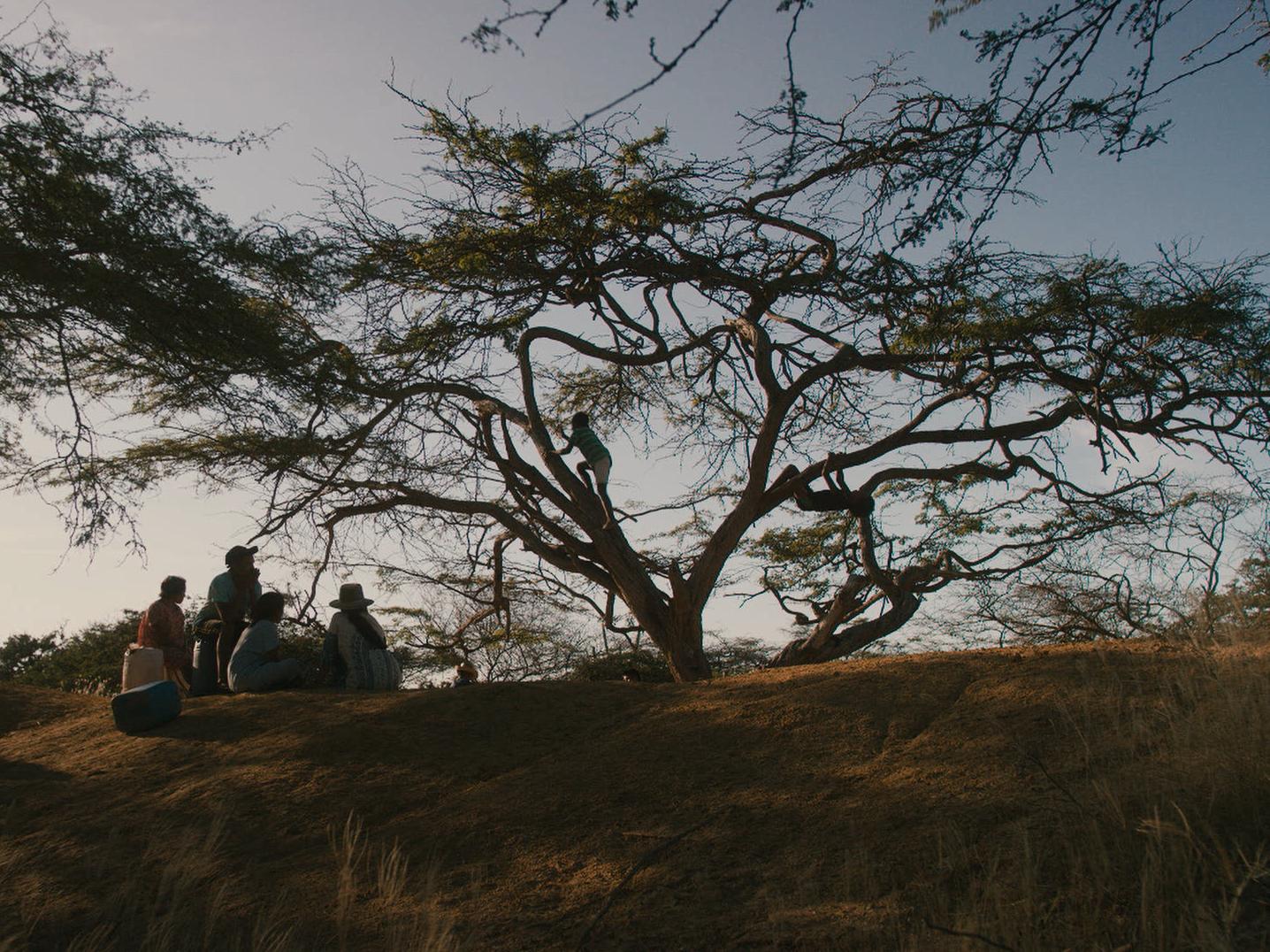 Desierto de la Guajira, en donde se desarrolla la historia de Lapü