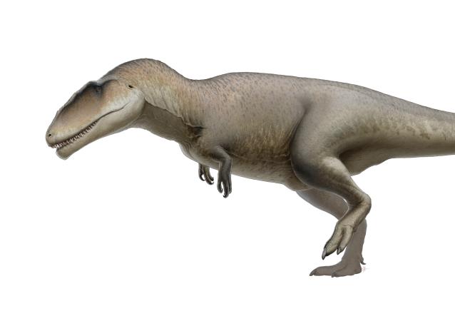 Un Carcharodontosauro, imagen creada por un artista