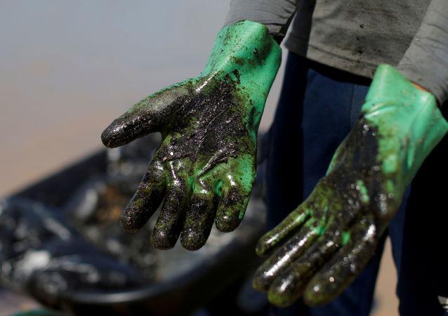 Las manos después de limpiar la playa del petróleo (archivo)