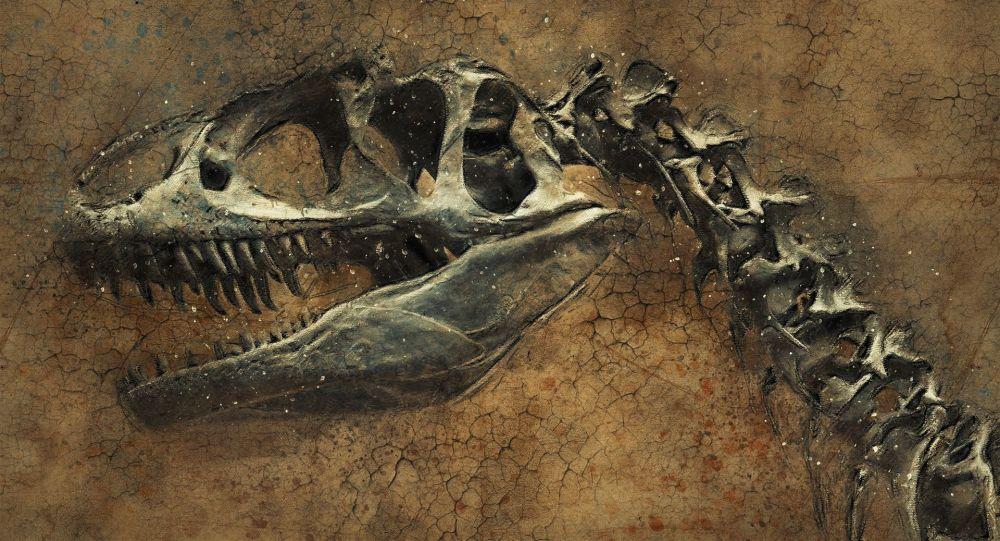 El esqueleto de un dinosaurio