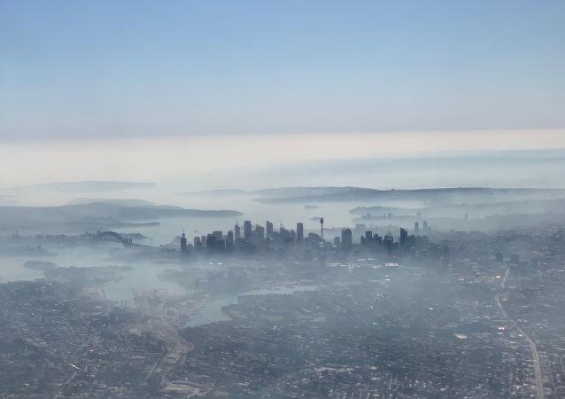 Humo de los incendios forestales cubre Sídney, Australia
