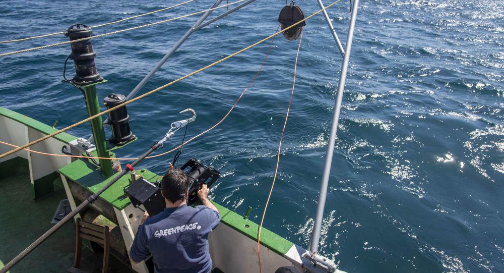 Testigos de la devastación del suelo marino en el agujero azul de Argentina