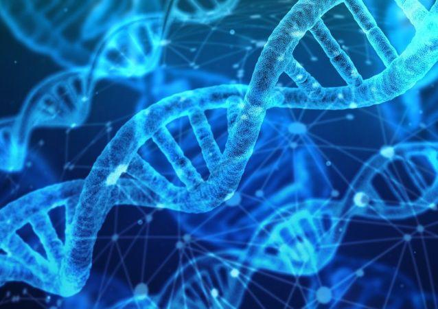 ADN (ilustración)