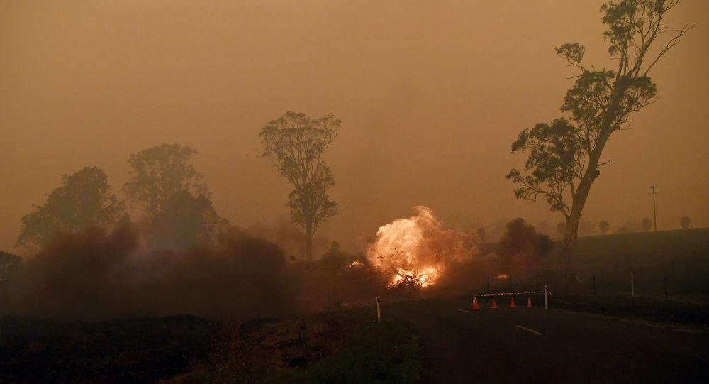 Los incendios forestales en Australia (archivo)