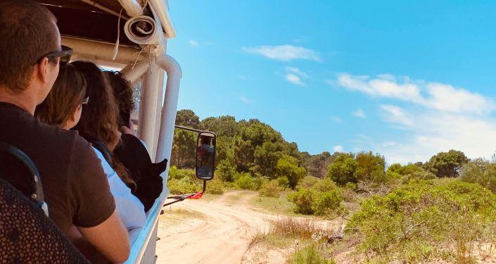 Vehículo transportando turistas en Cabo Polonio