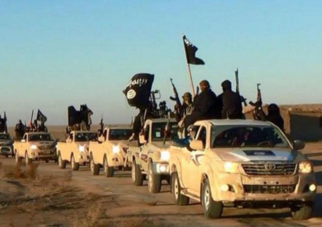 Los terroristas del Estado Islámico