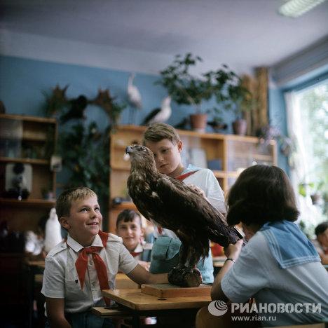 El campamento infantil de descanso más famoso de la URSS celebra medio siglo de  existencia