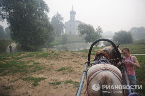 Provincia rusa de Vladímir azotada por incendios forestales