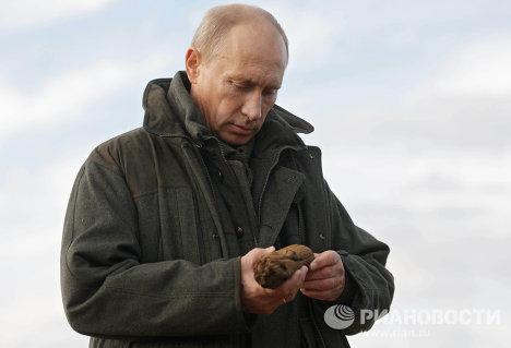 Putin vista zona de hielos perpetuos en Siberia