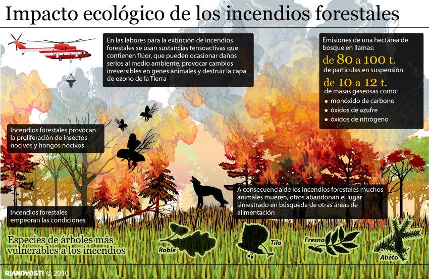 Влияние пожаров на экологию