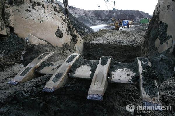 Предприятие Янтарный комбинат в Калининградской области