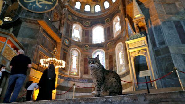 En el interior de la Catedral de Santa Sofía - Sputnik Mundo