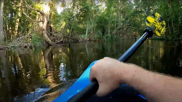 Cara a cara con un aligátor: un kayakista sufre un ataque inesperado - Sputnik Mundo