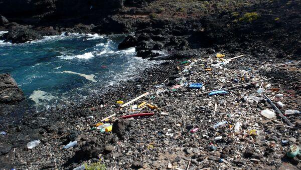 Suciedad en una cala cerca a la Punta de Abona (Tenerife) - Sputnik Mundo