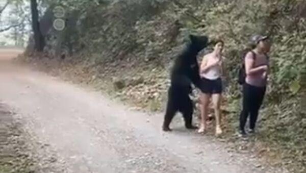 Un oso se pone de pie para hacerse una selfi con una muchacha - Sputnik Mundo