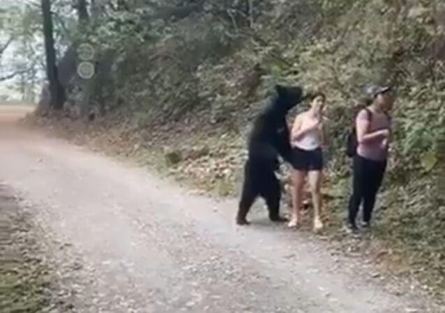 Un oso se pone de pie para hacerse una selfi con una muchacha