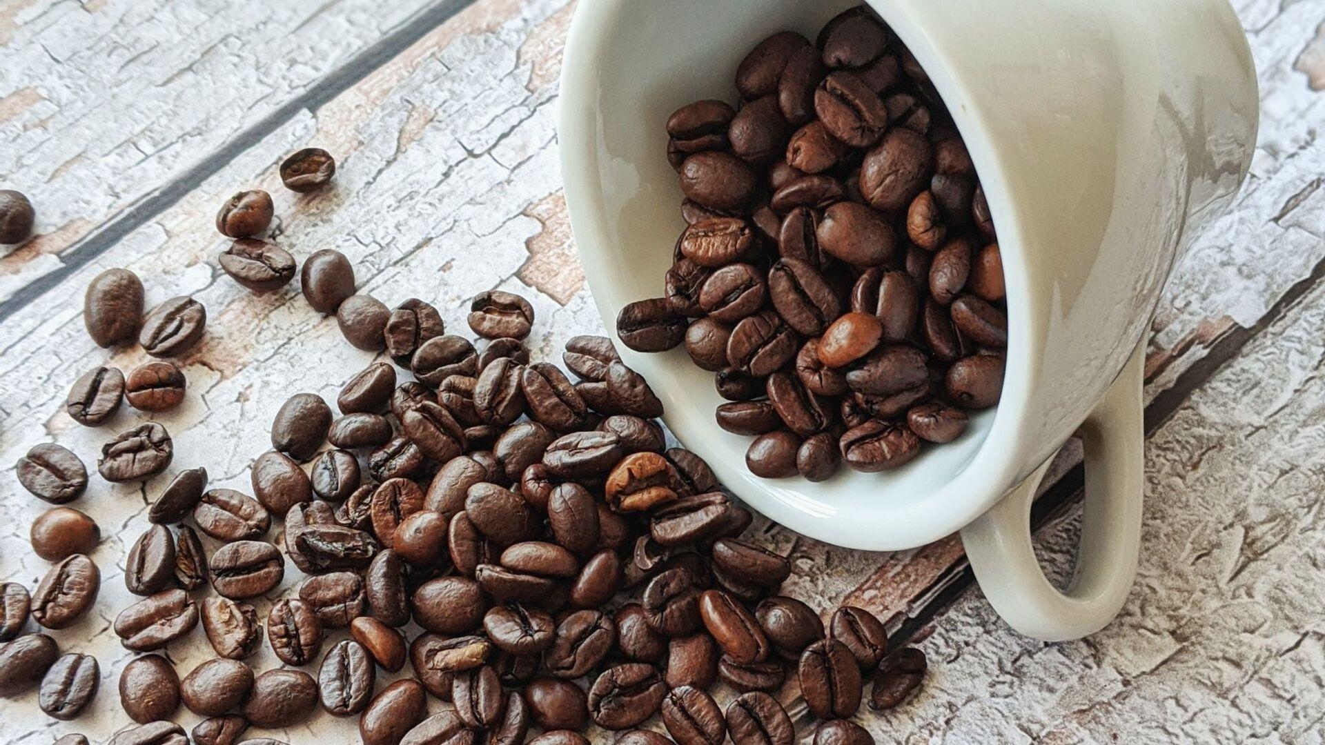 Granos de café - Sputnik Mundo, 1920, 07.10.2020