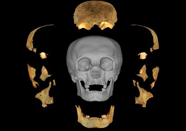 Modelo 3D del cráneo artificialmente deformado descubierto por Miguel Rodríguez Ferrer en Maisí (Cuba)