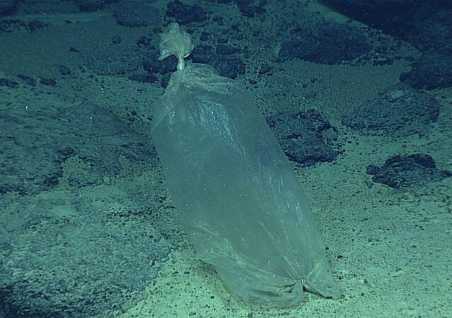 Una bolsa de plástico en el mar