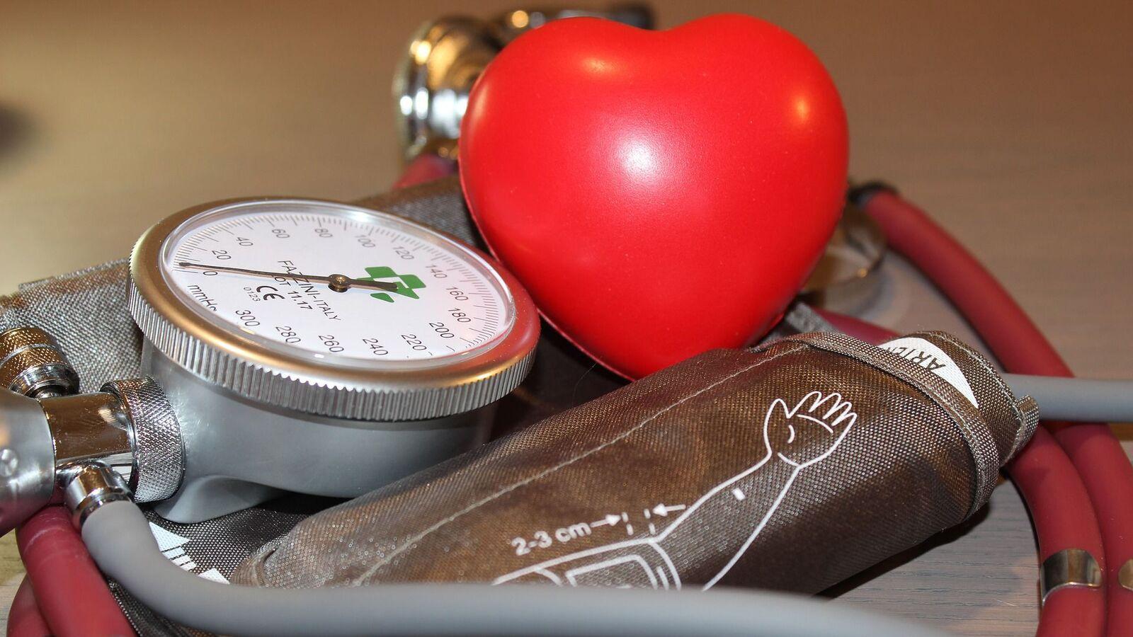 Sugieren vínculo entre el ritmo cardíaco y la esperanza de vida