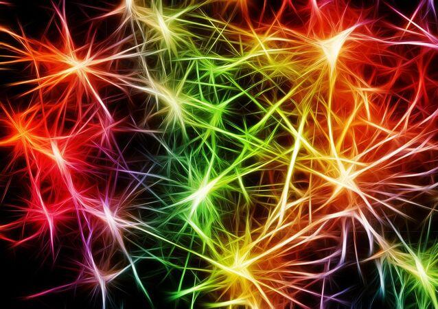 Los neuronas (imagen referencial)