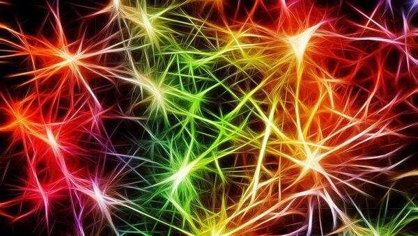 Los neuronas (imagen referencial) - Sputnik Mundo