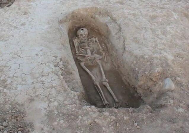 Esqueleto en yacimiento La Rioja