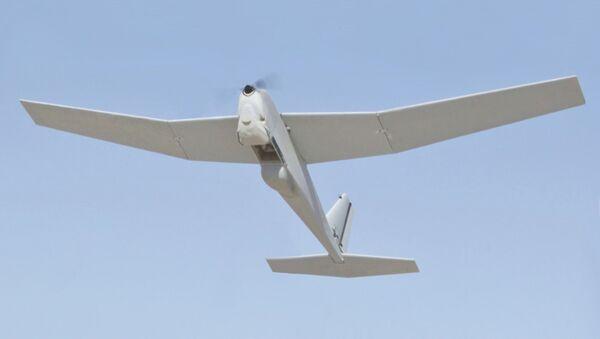 RQ-20, dron espía de fabricación estadounidense - Sputnik Mundo