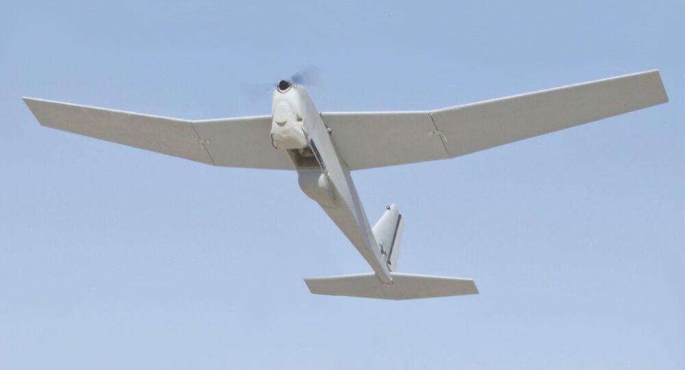 RQ-20 Puma, dron espía de fabricación estadounidense
