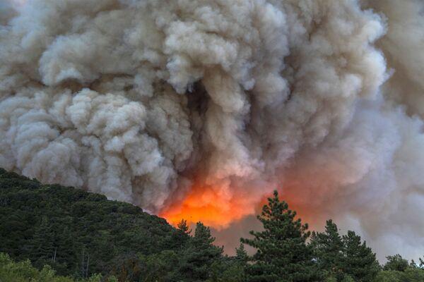 Miles de personas evacuadas: impactantes imágenes de incendios forestales en California - Sputnik Mundo