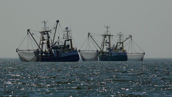 Barcos pesqueros - Sputnik Mundo