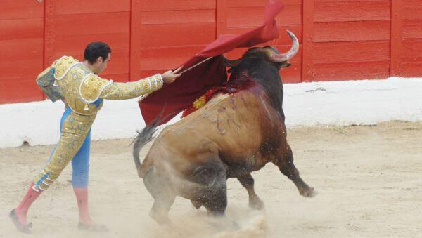 El torero Enrique Ponce toreando en la Plaza de Toros de Melilla (2011) - Sputnik Mundo