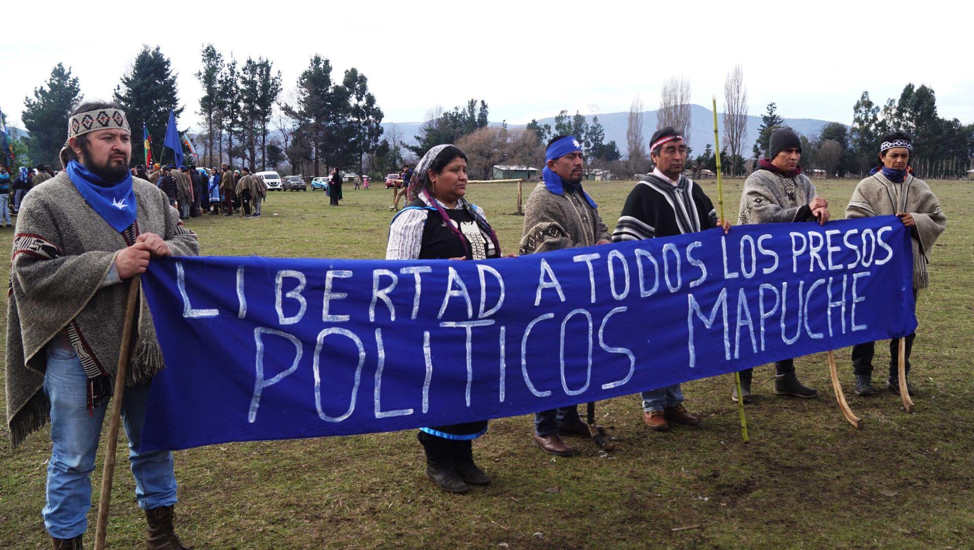 Pedido de libertad a los presos políticos mapuche - Sputnik Mundo, 1920, 11.08.2020