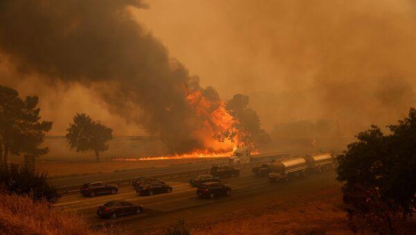 Incendios forestales en California, EEUU - Sputnik Mundo