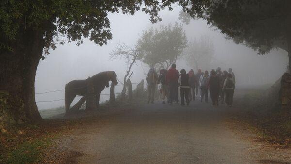 Imagen de archivo del Camino de Santiago  - Sputnik Mundo