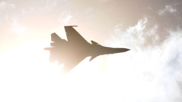 Un caza de la Fuerza Aérea rusa (imagen referencial) - Sputnik Mundo
