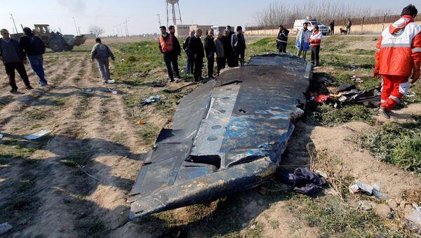 El lugar del siniestro del Boeing 737-800 de Ukraine International Airlines - Sputnik Mundo